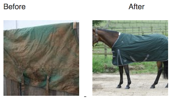 Horse Rugs Washed at Killyless Stores in Ballymena